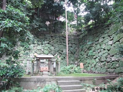 崇泰院、親鸞聖人の墳墓と御杖の逆杉