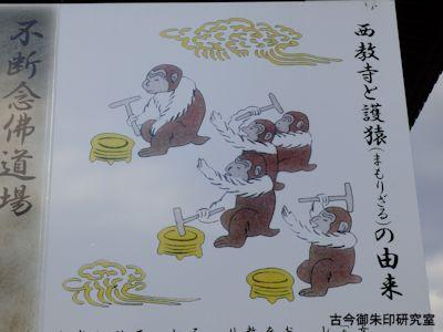 西教寺護猿